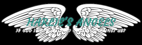 harlies-angels8